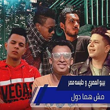 مش هما دول