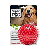 Ball For Dogs Review and Comparison