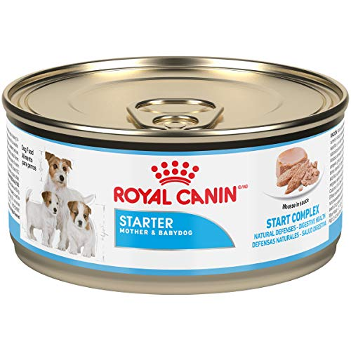 Royal CANIN Canine Health Nutrition Starter Mousse Canned Dog Food, 5.8 oz Cans by Royal CANIN