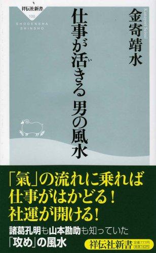 仕事が活きる 男の風水 (祥伝社新書 100)