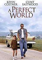 映画シリーズポスターパーフェクトワールドフィルムシリーズP1 ポスター A3サイズ(42x30cm)、素晴らしい室内装飾品