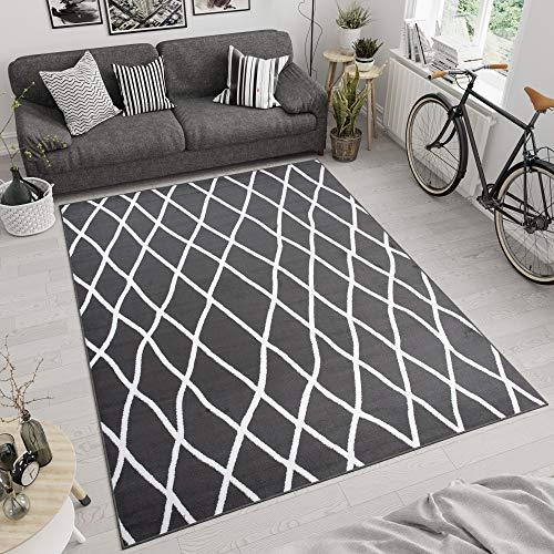 Tapiso Luxury Vloerkleed Woonkamer Slaapkamer Lijnen Donkergrijs Wit Design Modern Sfeervol Uitstraling Duurzaam Hoogwaardig Tapijt Maat - 120 x 170 cm