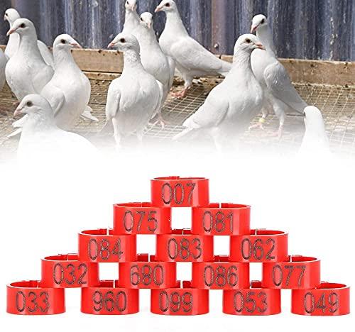 Duiven beenring plastic duiven voet ringpigonen beenbanden klein in grootte licht in gewicht slijtvast en duurzaam voor…