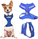TRAINING (Dog In Training/Do Not Disturb) Blue Colour Coded Non-Pull Front and Back D Ring Padded and Waterproof Vest Dog Harness PREVENTS Accidents By Warning Others Of Your Dog In Advance (S)