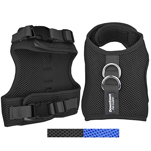 Downtown Pet Supply Best Cat Vest Harness and Leash Combo with Added Safety Features to Make it Escape Proof for Small, Medium, Large Cats and Small Dogs/Puppy (Blue, Medium)