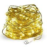 Salcar USB式 LEDイルミネーションライト 銅線ワイヤーライト 10m LED100 球 電飾 飾り付け フェアリーライト LEDストリングライト 祝日 結婚式 パーティー クリスマス 防水防雨仕様 電球色 ウォームホワイト
