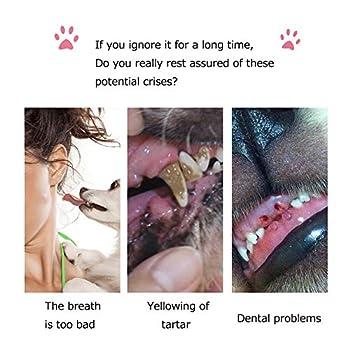 Solerconm 7pcs Brosses à Dents pour Chiens,Brosse à Dents à Doigts pour Chiens Chats,Silicone Dents de Chat Nettoyant Soins Dentaires pour Animaux Douce et Souple Élimine la Plaque Dentaire
