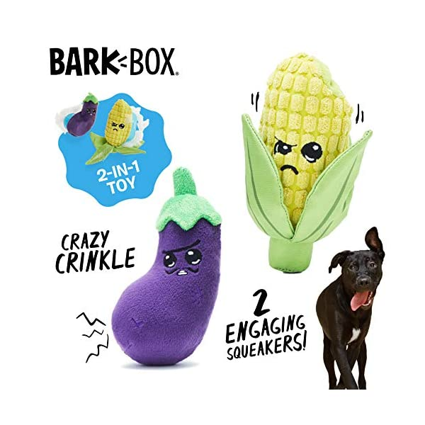 Barkbox Dog Squeak Toys | 2-in-1 Interactive Toys for Chewers | Durable Tug and Fetch Toys | Stuffed Plush Toys and Balls for Small/Medium/Large Dogs