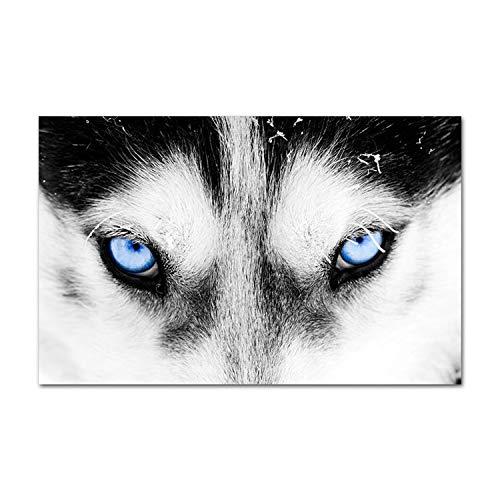 Arrowss Blue Eye Wolf-Kopf-Tier-Plakat Minimalist Wand-Kunst-Leinwand-Druck Malerei Nordic kreative Bild Moderne Wohnzimmer-Dekoration, 50x70cm Unframed, Bild A