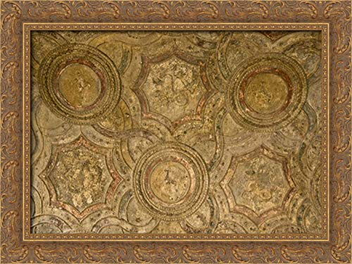 Kaveney, Wendy 40x28 Gold Ornate Framed Canvas Art Print Titled: Italy, Pompeii Ceiling of The Stabian Baths