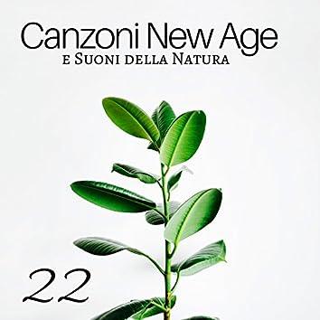 22 Canzoni New Age e Suoni della Natura, Tecniche di Rilassamento per Dormire