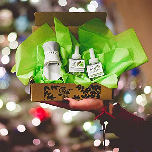 New - Scent Fill Christmas Tree Air Freshener Kit (1) Fraser Fir Balsam (1) Sycamore Fir and (1) Air Wick Scented Oil Warmer