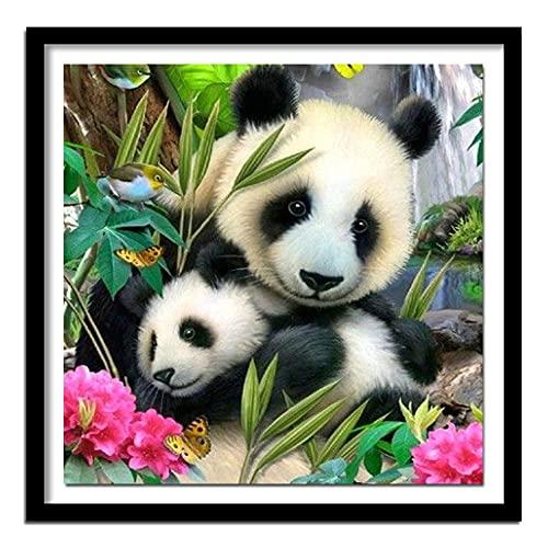 ZXXGA DIY 5D Kit de números de Pintura de Diamantes Panda Family Crystal Rhinestone Bordado Picture Crafts Home Decoración de Pared Regalo Diamante Redondo 50x50cm