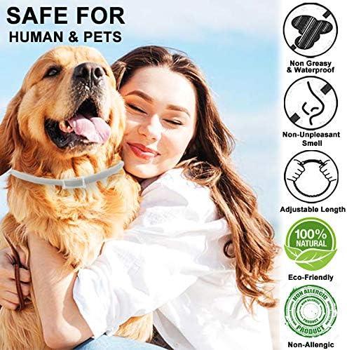 PROZADALAN Collier Antiparasitaire pour Chiens, Collier Anti-Puces et Anti-Tiques pour Chiens, Protection Efficace Pendant 8 Mois, Ajustable et Imperméable (2pack)