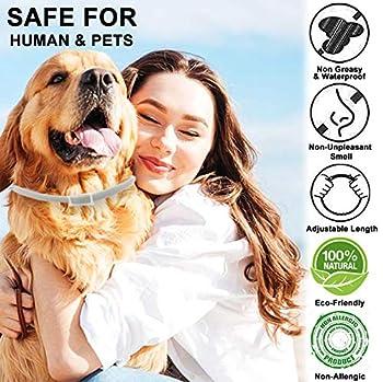 PROZADALAN Collier Antiparasitaire pour Chiens, Collier Anti-Puces et Anti-Tiques pour Chiens, Protection Efficace Pendant 8 Mois, Ajustable et Imperméable (1pack)