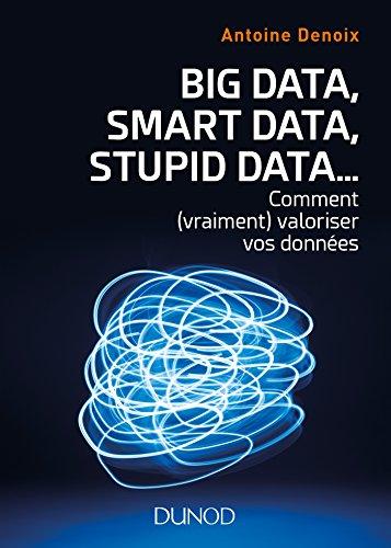 Big Data, Smart Data, Stupid Data... : Comment (vraiment) valoriser vos données (Hors Collection)
