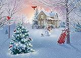 Box Home - Tarjetas de Navidad (15 tarjetas, 16 sobres de papel de aluminio)