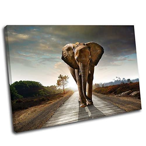 Canvas Culture - Elephant Landscape Canvas Art Print Box Framed Picture 6 Original 45 x 30cm