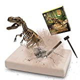 VIBIRIT Dig Up Dinosaurs Skeleton Set,Dinosaur Digging Fossil Kit Model Toys Educational Realistic Toys for Kids,Boys,Girls,Random
