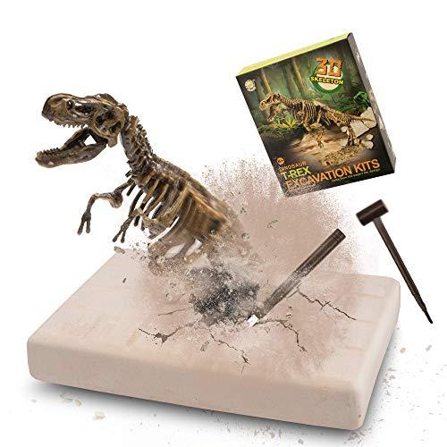 MUSCCCM Kit di scavi per Dinosauri T-Rex, Kit di scavo fossili di Scheletro Dino Modello di Dinosauro Realistico Giocattoli educativi Regalo per Bambini Ragazzi Ragazze