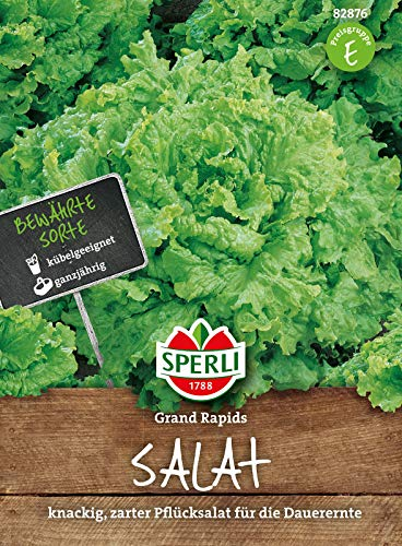 82876 Sperli Premium Salat Samen Grand Rapids | Zart und Knackig | Pflücksalat Saatgut | Salat Saatgut | Pflücksalat Samen