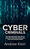 Cyber Criminals: The Tips and Hacks They Use to Crack the Financial Industry and your most precious assets (English Edition)