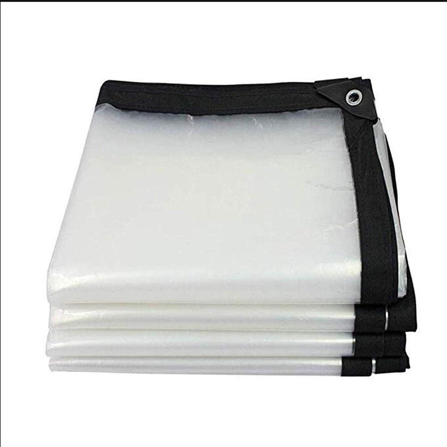 ぶら下がる誕生日仕えるLCAIHUA 防水シート透明なPVCプラスチックシート断熱水分屋外バルコニー、サイズ22 (Color : Clear, Size : 3x4m)