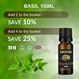 M.E.O. Aceite Esencial de albahaca, 10 ml