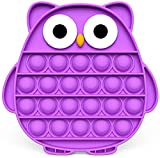 WSMXZDH 28pcs Sensory Fidget Toy Set, Relieves Stress and Anxiety Fidget Toy Kit for Children Adults, Special Toys Assortment for Birthday Party Favors, Classroom Rewards Prize (Purple Owl)