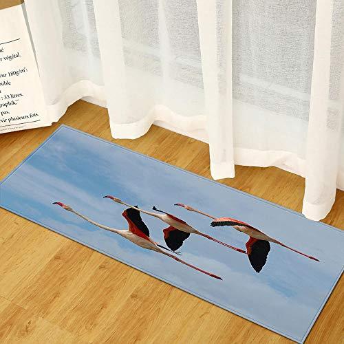 XIAOZHANG Passatoia Corridoio Tappeto Tessuto Flanella Animali Volanti Lunghi Tappetino Antiscivolo Tappetino Assorbente da Cucina Prova di Olio Tappeto Resistente 40X120Cm