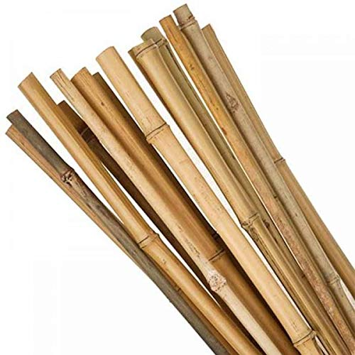 Muddy Hands Heavy Duty Strong Bamboo Canes Garden Plant Support Trellis Pole Stake Sticks (10, 5ft, 10-12mm)