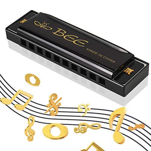 Armonica a Bocca Bambini,Fisarmonica Bocca Bambini,Blues Harmonica 10 Fori 20 Toni,Armonica Strumento Musicale Bambini,Diatonica Harp,Scala (C) Do Maggiore per Principianti Bambini Alunno(Nero)