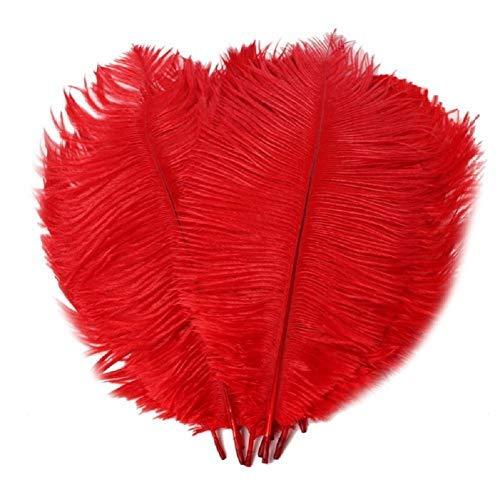 10 plumas grandes de avestruz 25-30 cm/9.8-11.8 pulgadas disfraz para cumpleaos, bodas, fiestas, manualidades, manualidades, color negro y rojo
