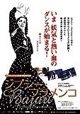 ジプシー・フラメンコ [DVD] image