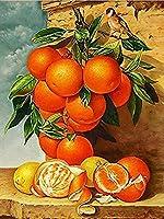 NYIXIA 油絵 数字キットフレーム付き 、フルーツ オレンジ ラブ、による 絵画 塗り絵 手塗り DIY絵、初心者 子供と大人 人気 キャンバス 油絵 の具 40x50cm