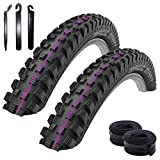 Schwalbe Magic Mary Downhill Addix Ultrasoft Pneu de vélo Noir 60-622 (29 x 2,35) + 2 chambres à air Schwalbe SV19 avec 3 démonte-pneus