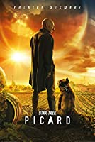 Star Trek PP34581 61 x 91.5 cm (Picard Number One) Maxi Poster, Multi-Colour, 5 cm
