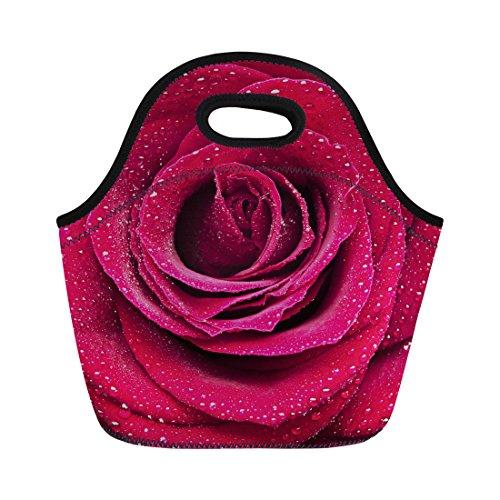 Nopersonality coloré Rose de voyage isotherme réutilisable Nourriture Sac à lunch box Container, Rose Pattern-4, Taille M