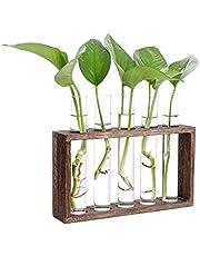 LS Hyindoor 試験管ガラス花瓶 水耕栽培 卓上花瓶 一輪挿し 花器 フラワーベース木製フレーム 家飾り ギフト