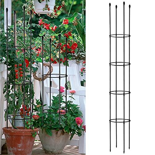 AK-XING Rankgitter für den Garten, Rankhilfe für Pflanzen, Käfige mit Eisenringen, Rankenhalter, kleiner Topfpflanzenspalier für Zuhause, Garten, Balkon