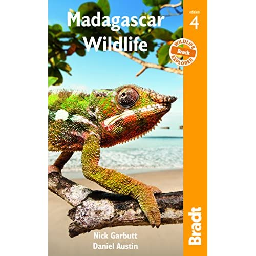 Madagascar Wildlife: A Visitor's Guide [Lingua Inglese]
