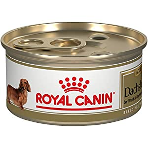 Royal Canin Breed Health Nutrition Dachshund Adult Loaf in Sauce Canned Dog Food, 3 oz (Pack of 24)