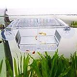 capetsma Fish Breeding Box, Acrylic Fish Isolation...
