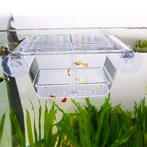 capetsma Fish Breeding Box, Acrylic Fish Isolation Box with Suction Cups, Aquarium Acclimation...