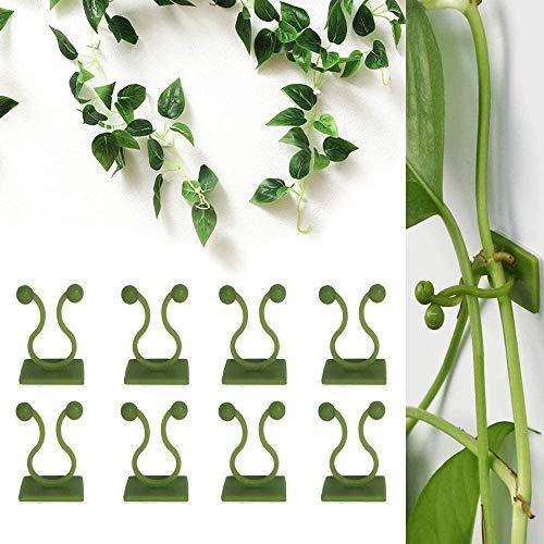 FayTun Kletter-Wandbefestigungs-Clips, 100 Stück, Pflanzen-Fixierer, grüne Hängepflanzen-Clips, Rattanklammer, Pflanzenunterstützung für Heimdekoration