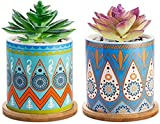 Lihebcen Succulent Plant Pots - 3.5 Inch Mandalas Pattern Cylinder Ceramic Succulent Modern Delicate Planter with Drainage Hole, Bamboo Trays for Cactus,Perfect Idea and Wishes,Pack of 2