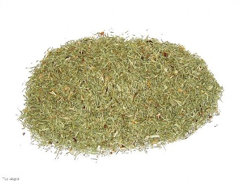 Schachtelhalmkraut Zinnkraut Tee 1 kg Vorratspack Tee-Meyer