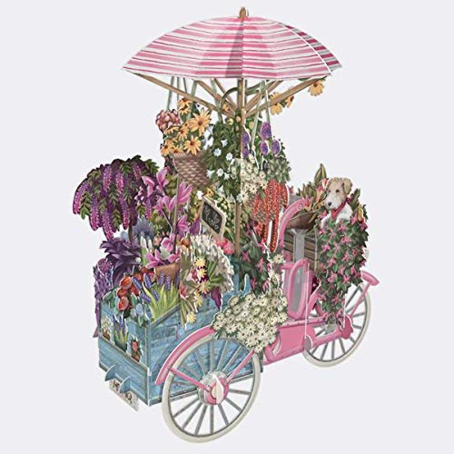 The Flower Seller's Pink Bicycle - 3D POP UP Greetings Card (Standard)