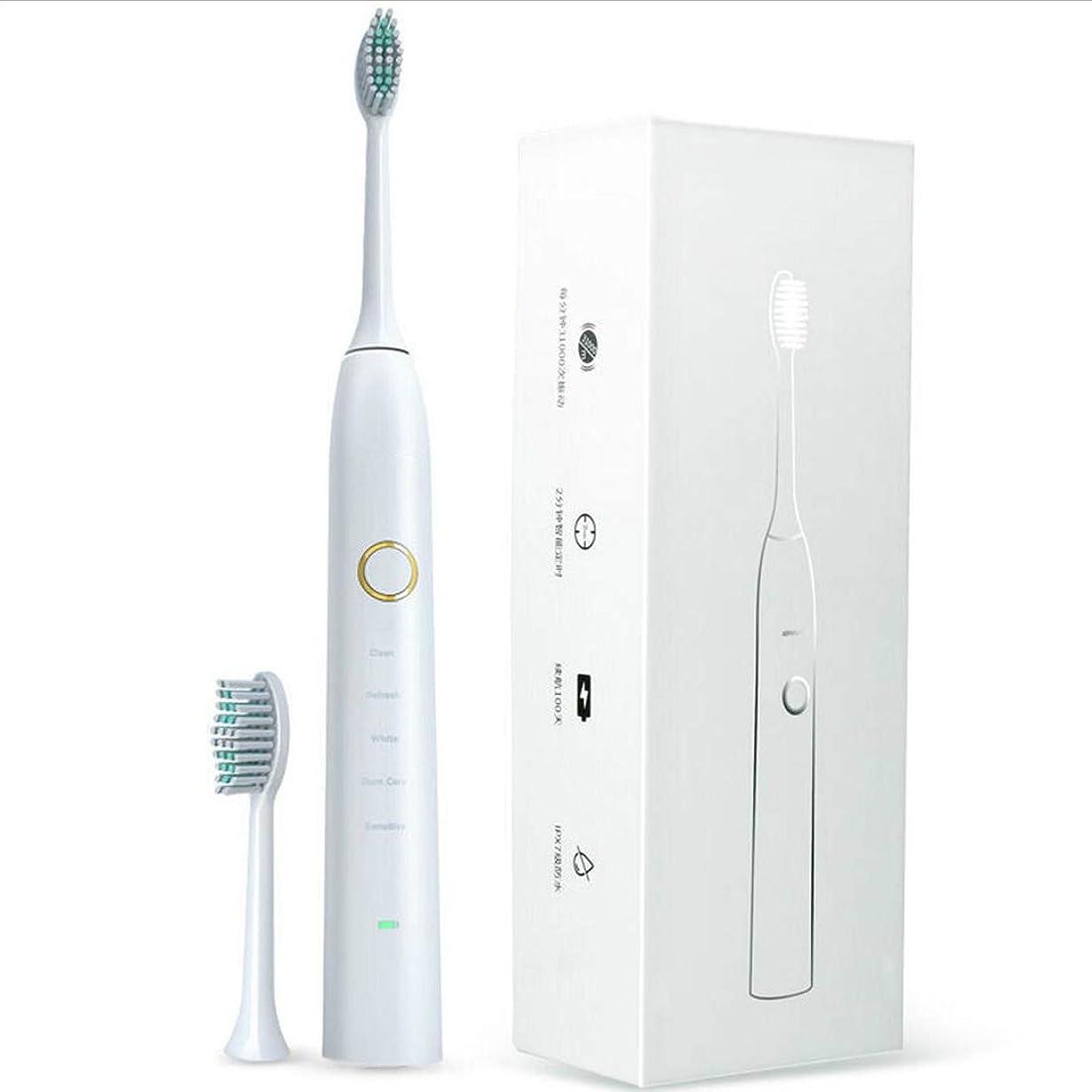 脅威皿精査人民の東の道 M100新しいワイヤレス充電超音波電動歯ブラシ (色 : ホワイト)