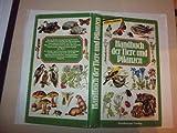 Handbuch der Natur : Tiere u. Pflanzen Europas ; e. Bestimmungsbuch bei Amazon kaufen